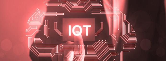 IoT Support & Maintenance