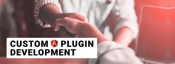 Custom Angular Plugin Development