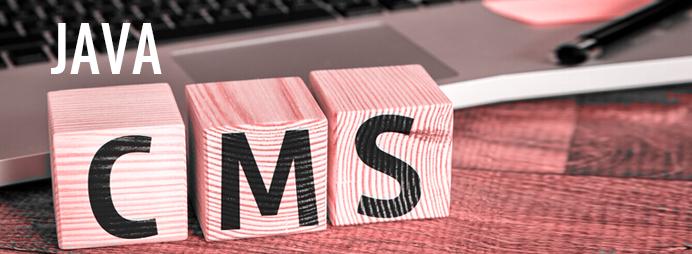 Java CMS Development