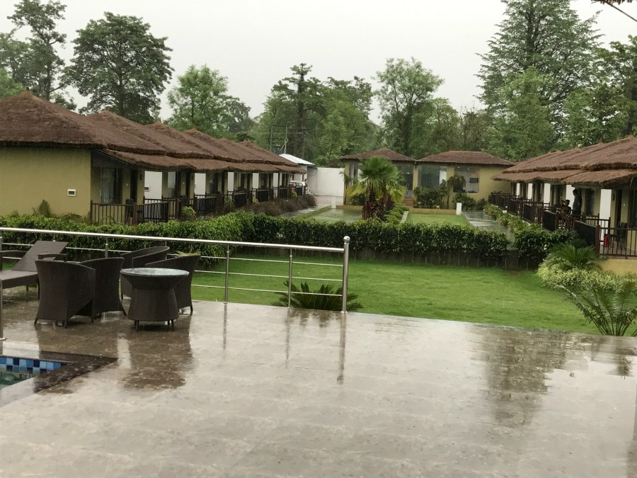 Rain in Tigers resort