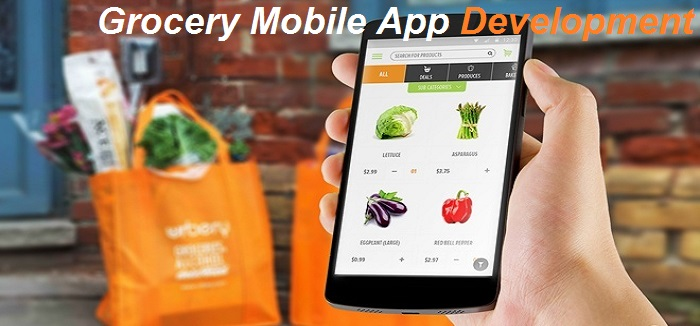 Grocery-Mobile-App-Development