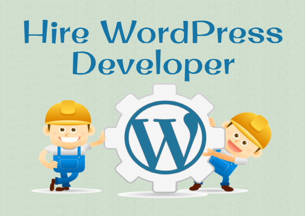 Important Questions To Put Before You Hire A WordPress Developer/P...