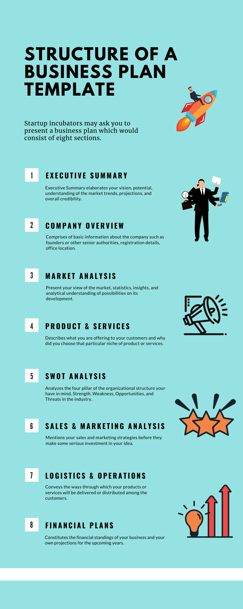 Structure of a Business Plan Template Infographic